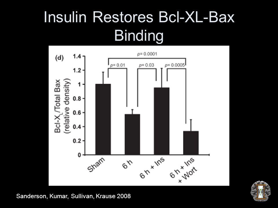 Insulin Restores Bcl-XL-Bax Binding Sanderson, Kumar, Sullivan, Krause 2008