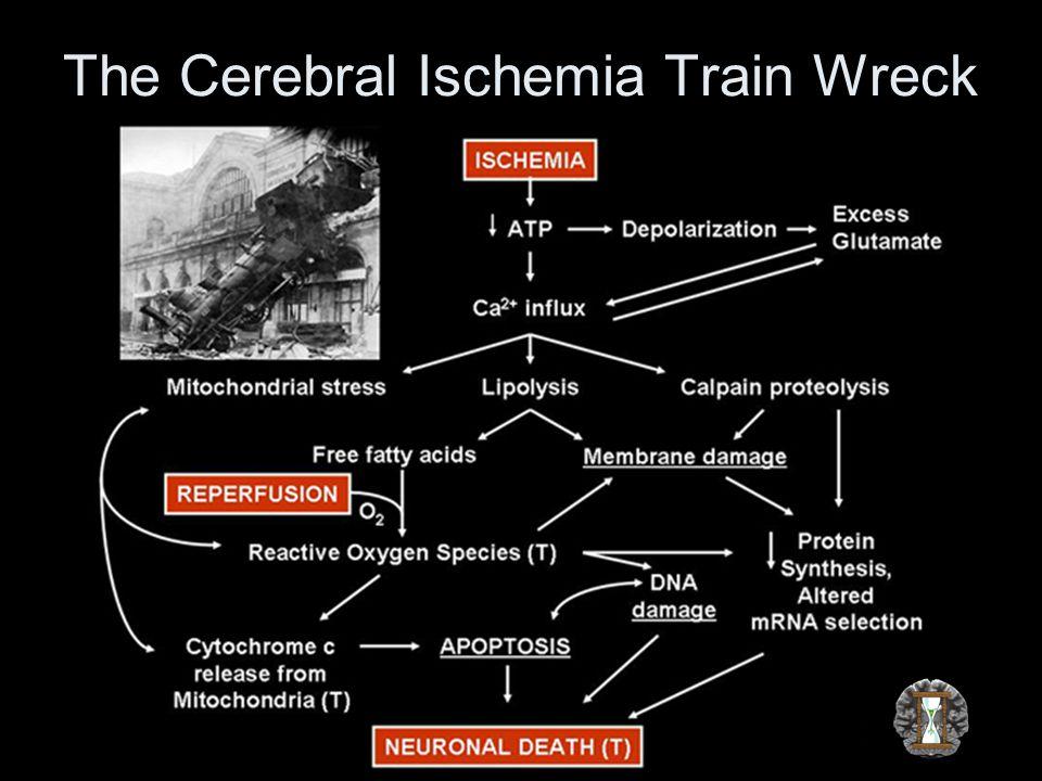 The Cerebral Ischemia Train Wreck
