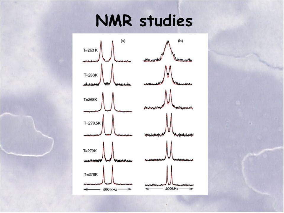 NMR studies
