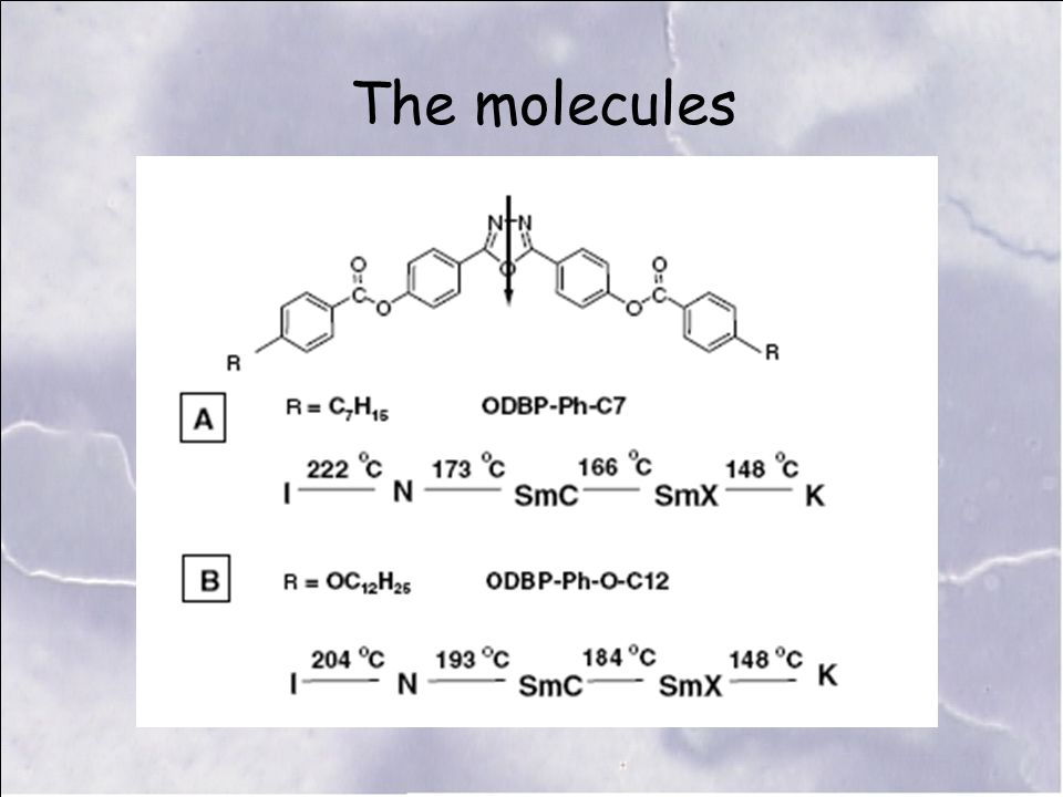 The molecules