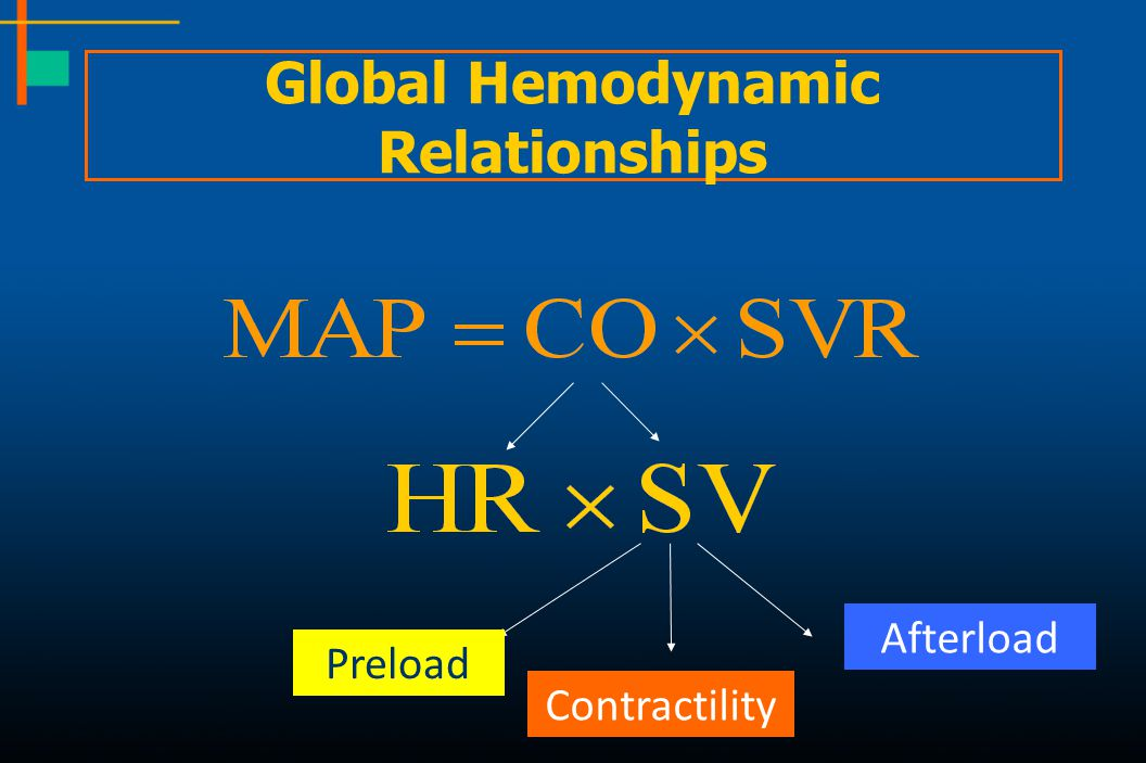 Global Hemodynamic Relationships Preload Contractility Afterload