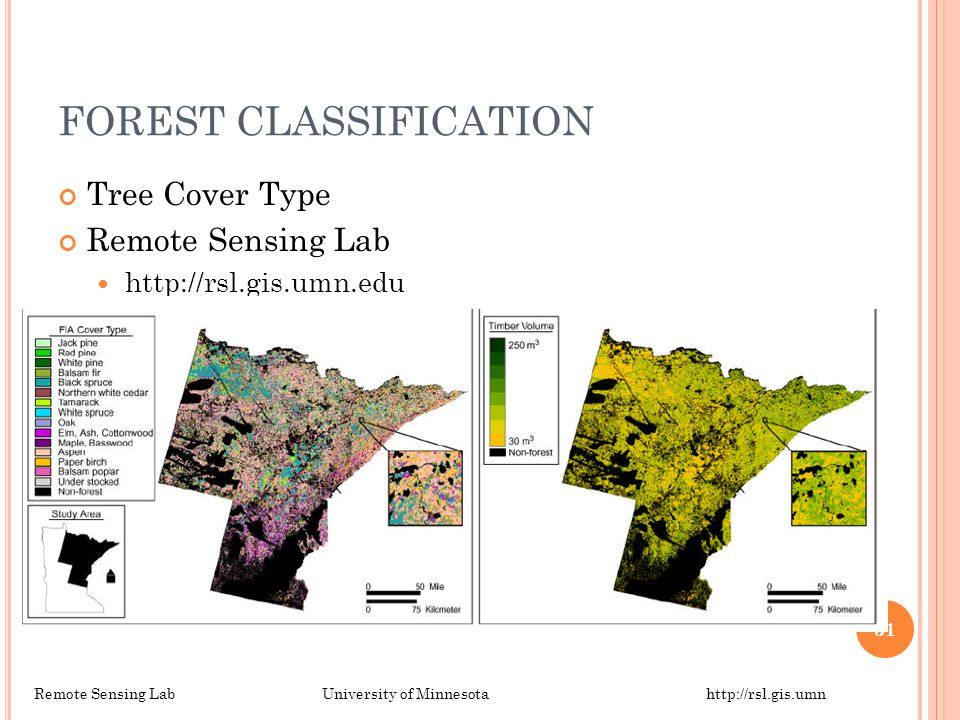 FOREST CLASSIFICATION Tree Cover Type Remote Sensing Lab http://rsl.gis.umn.edu Remote Sensing LabUniversity of Minnesotahttp://rsl.gis.umn 31