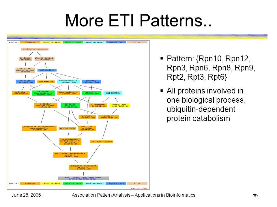 June 28, 2006 Association Pattern Analysis – Applications in Bioinformatics 40 More ETI Patterns..  Pattern: {Rpn10, Rpn12, Rpn3, Rpn6, Rpn8, Rpn9, R