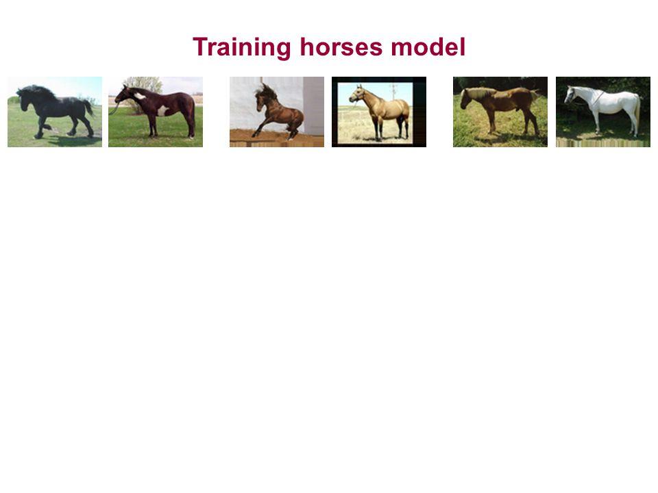 Training horses model