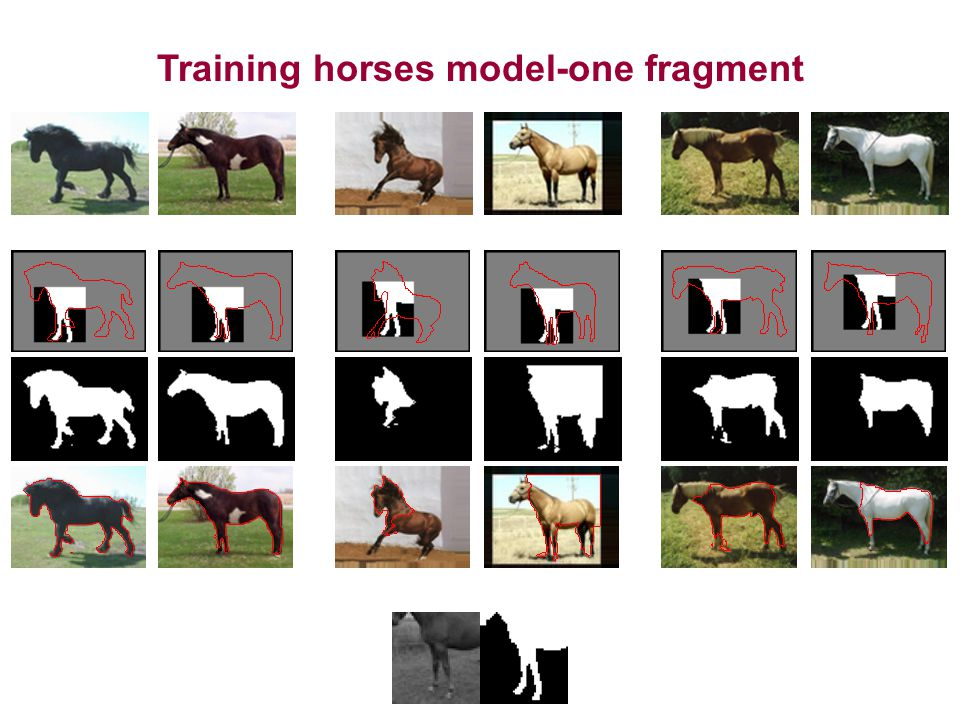 Training horses model-one fragment