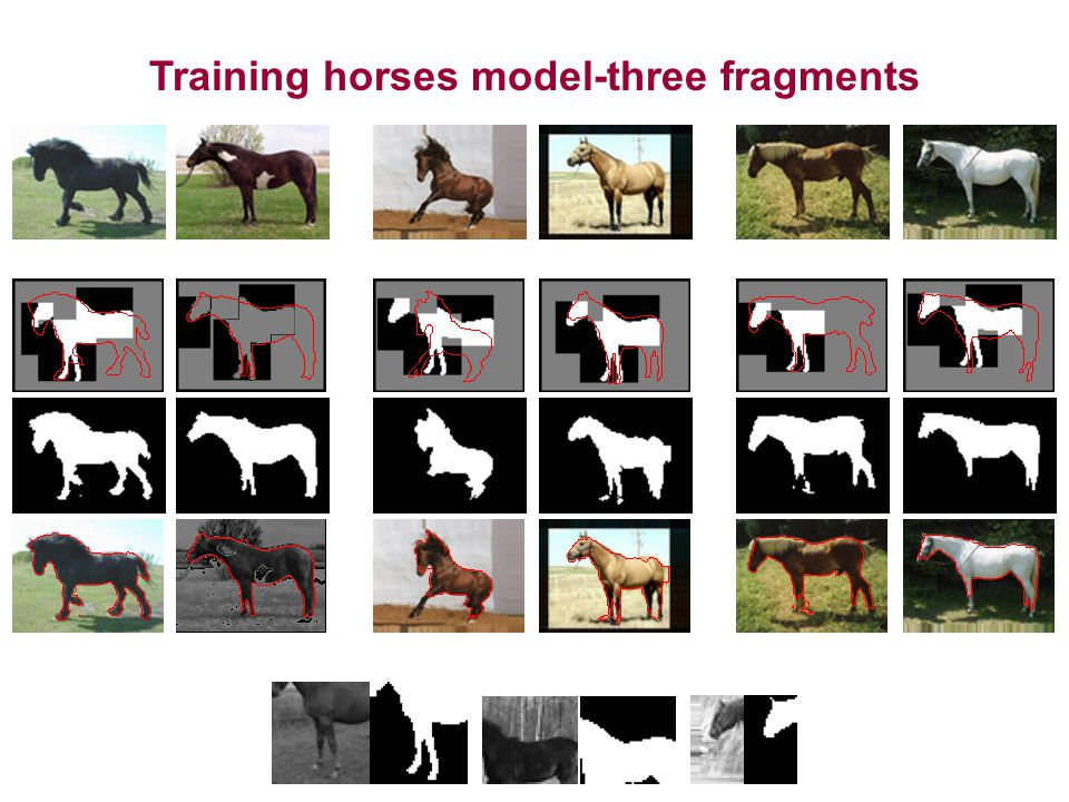 Training horses model-three fragments