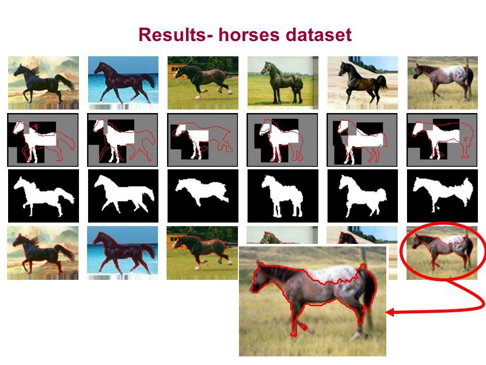 Results- horses dataset
