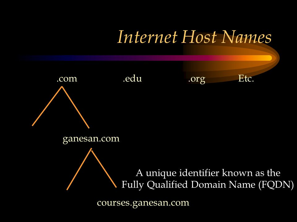 Internet Host Names.com.edu.orgEtc.