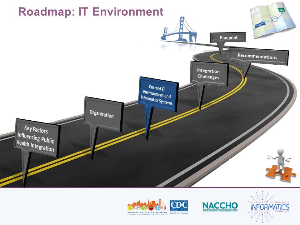 Roadmap: IT Environment