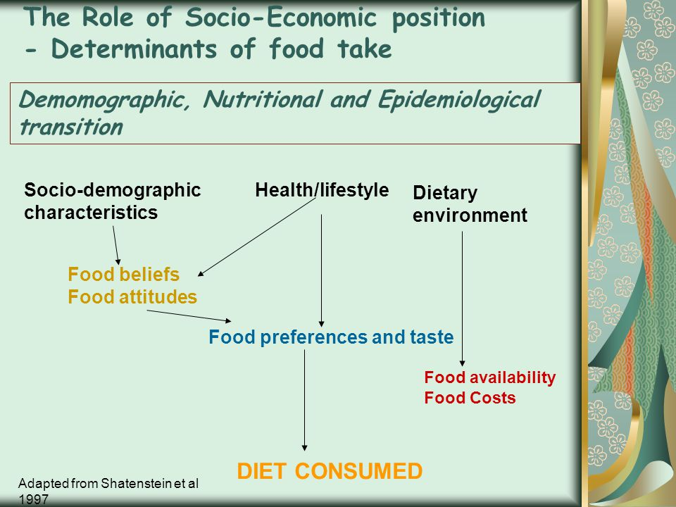 The Role of Socio-Economic position - Determinants of food take Demomographic, Nutritional and Epidemiological transition Socio-demographic characteri
