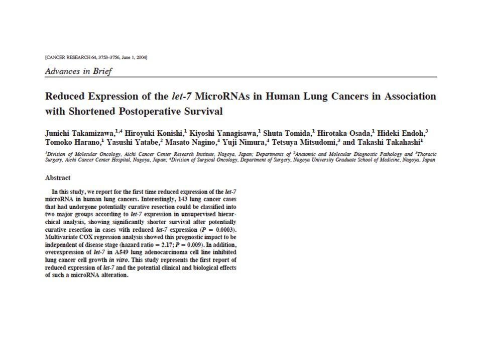 Let-7g suppresses tumorigenesis in vivo.Kumar M S et al.