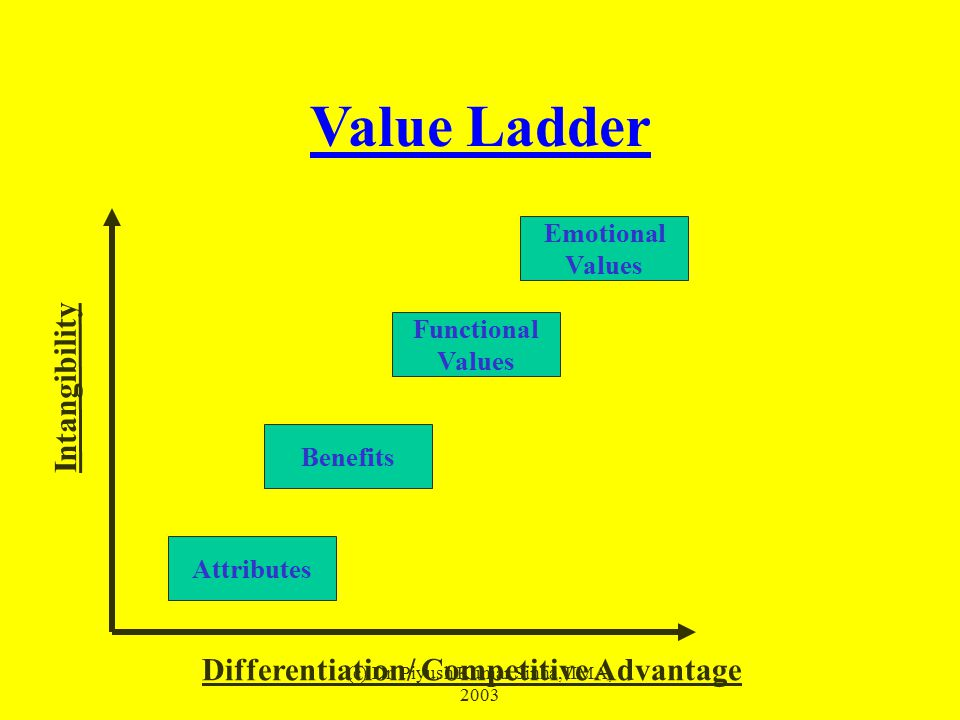 (c) Dr. Piyush Kumar Sinha, IIMA, 2003 Value Ladder Attributes Functional Values Benefits Differentiation/ Competitive Advantage Intangibility Emotion