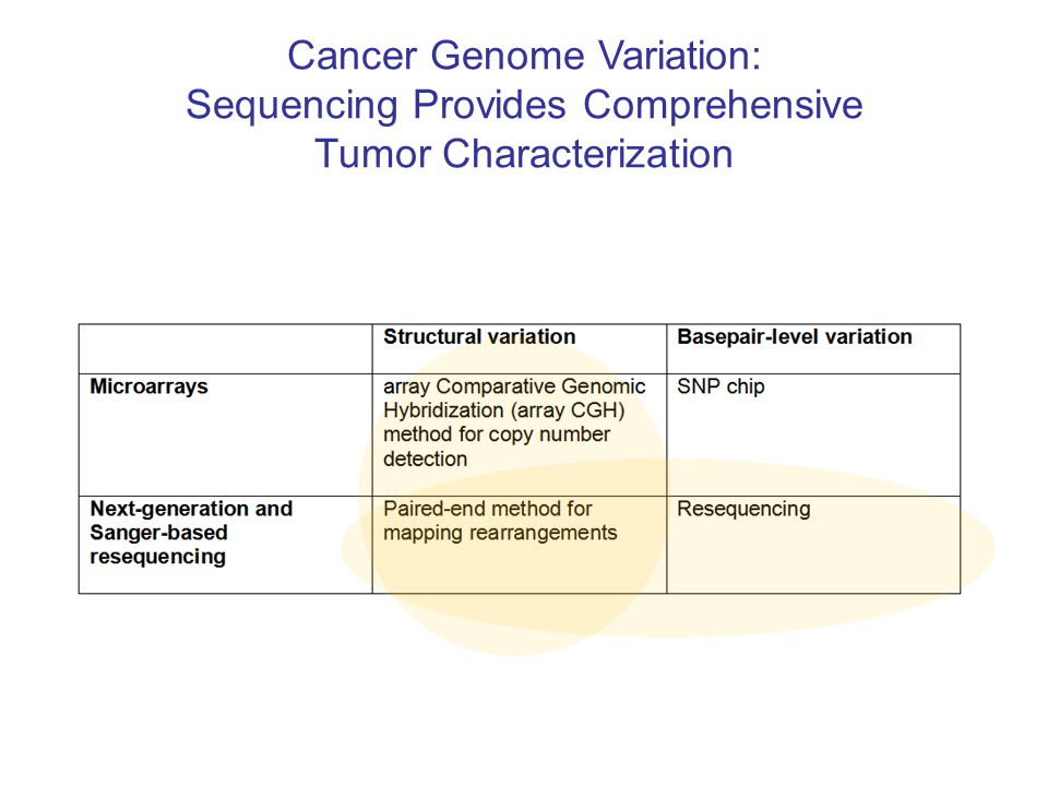 Cancer Genome Variation: Sequencing Provides Comprehensive Tumor Characterization