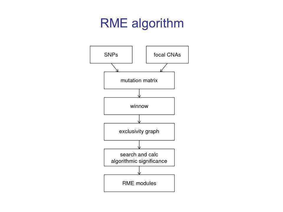 RME algorithm