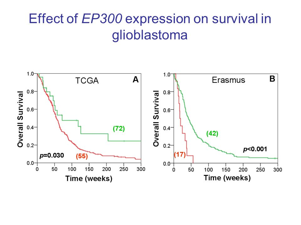 Effect of EP300 expression on survival in glioblastoma
