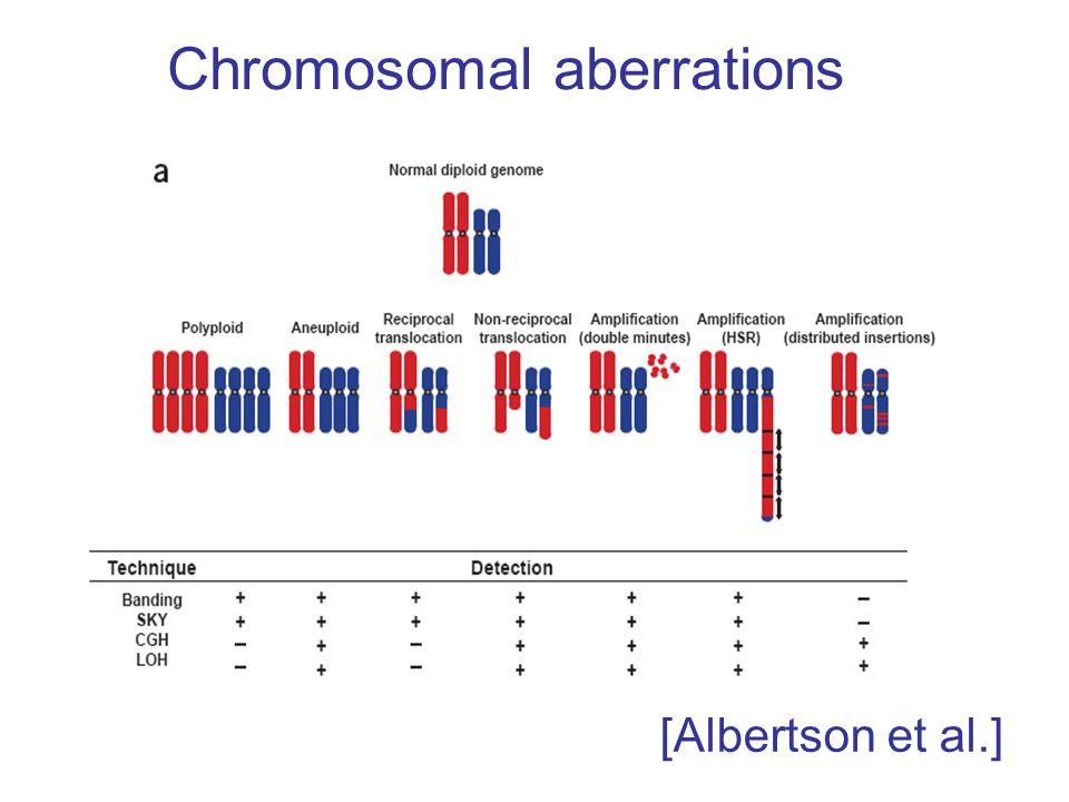 Chromosomal aberrations [Albertson et al.]