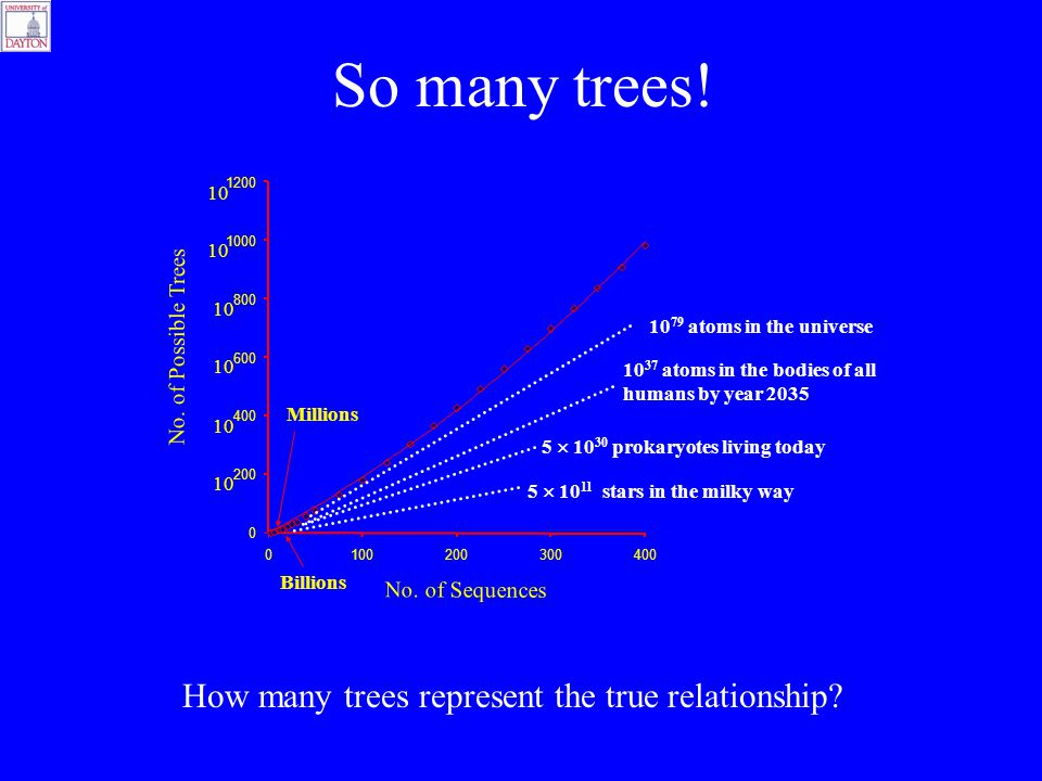 So many trees! 0 400 600 800 1000 1200 0100200300400 Millions Billions 10 200 10 No. of Possible Trees No. of Sequences 10 79 atoms in the universe 10