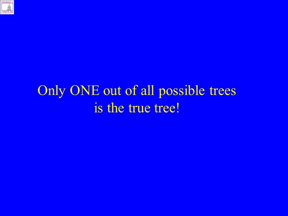 Only ONE out of all possible trees is the true tree!