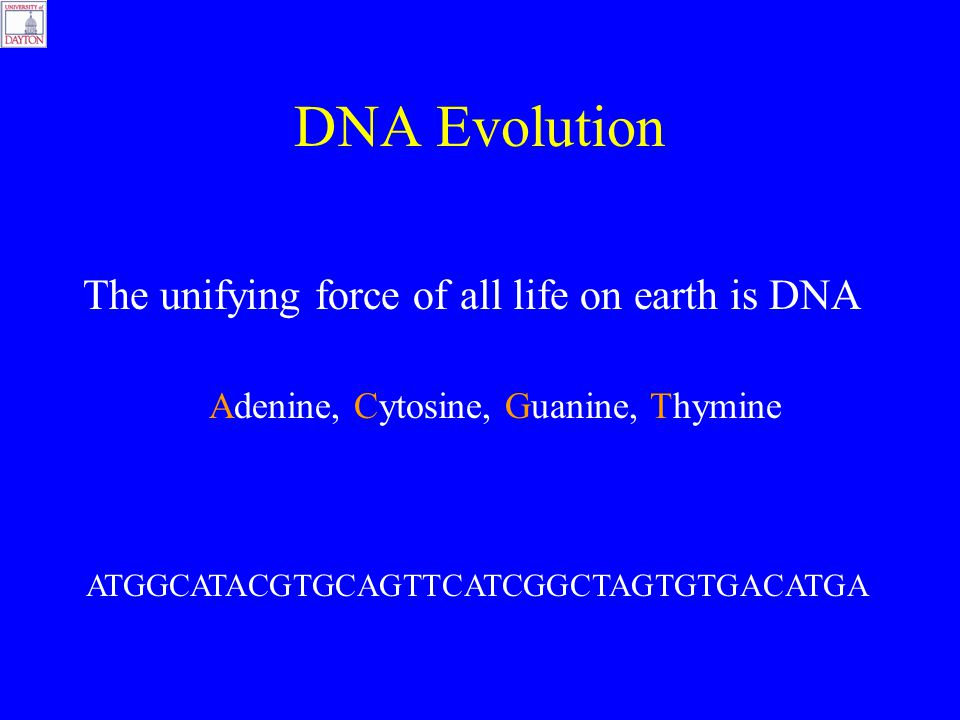 DNA Evolution The unifying force of all life on earth is DNA Adenine, Cytosine, Guanine, Thymine ATGGCATACGTGCAGTTCATCGGCTAGTGTGACATGA
