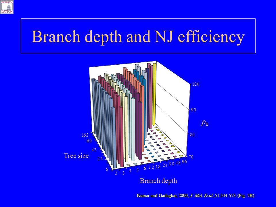 Branch depth and NJ efficiency Kumar and Gadagkar, 2000, J. Mol. Evol.,51:544-553 (Fig. 5B)