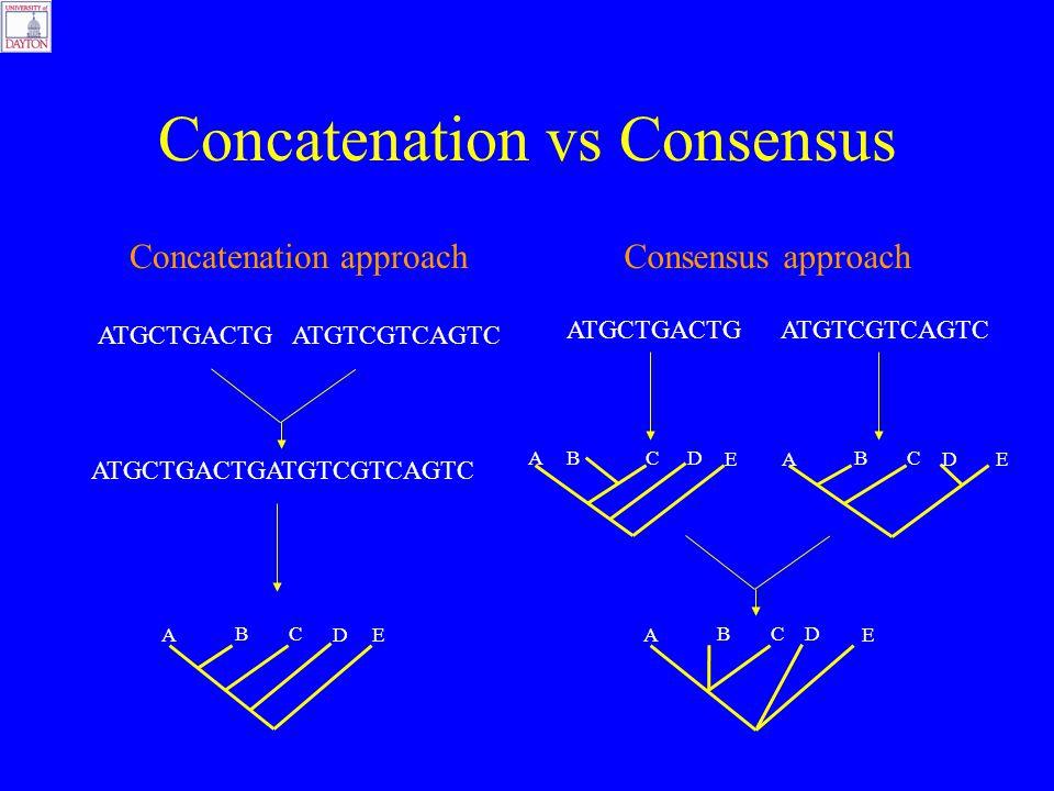 Concatenation vs Consensus Concatenation approach ATGCTGACTG ATGTCGTCAGTC A BC DE A BC D E A BC DE Consensus approach A BCD E