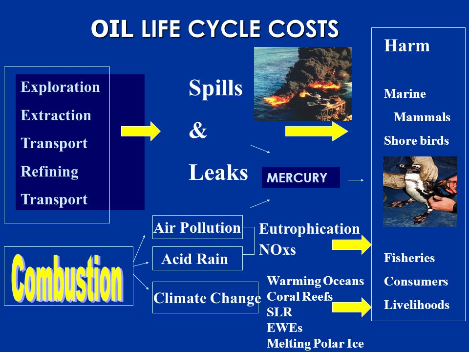 Exploration Extraction Transport Refining Transport Air Pollution Acid Rain Climate Change Eutrophication NOxs Warming Oceans Coral Reefs SLR EWEs Melting Polar Ice Harm Marine Mammals Shore birds Fisheries Consumers Livelihoods OIL LIFE CYCLE COSTS Spills & Leaks MERCURY