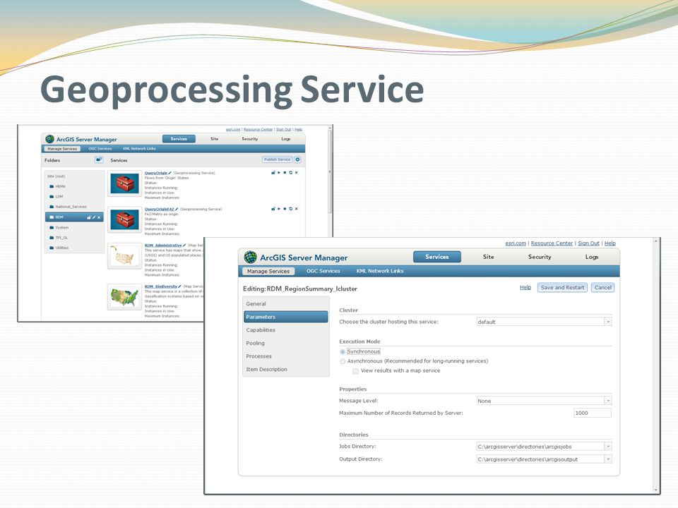Geoprocessing Service