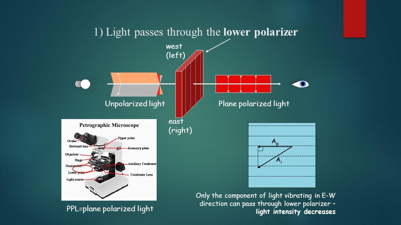 1) Light passes through the lower polarizer west (left) east (right) Plane polarized light PPL=plane polarized light Unpolarized light Only the compon