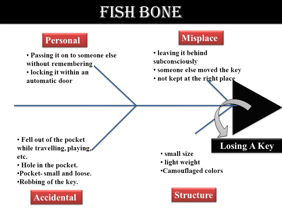 Fish Bone Misplace Personal Structure Accidental leaving it behind subconsciously someone else moved the key not kept at the right place Passing it on to someone else without remembering locking it within an automatic door small size light weight Camouflaged colors Fell out of the pocket while travelling, playing, etc.