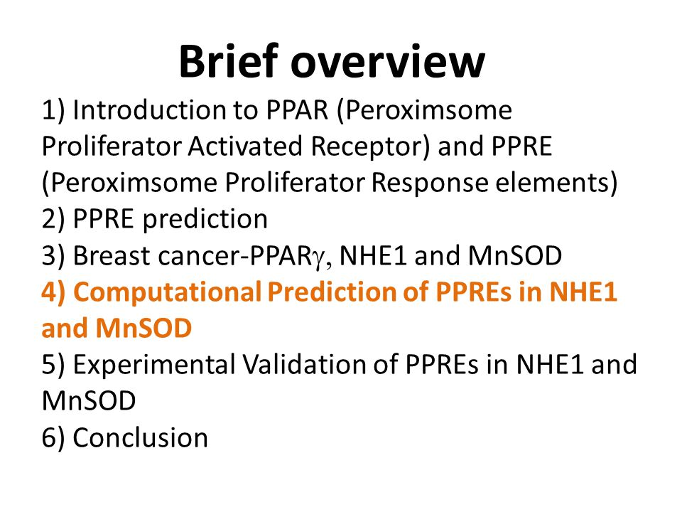 Brief overview 1) Introduction to PPAR (Peroximsome Proliferator Activated Receptor) and PPRE (Peroximsome Proliferator Response elements) 2) PPRE prediction 3) Breast cancer-PPAR  NHE1 and MnSOD 4) Computational Prediction of PPREs in NHE1 and MnSOD 5) Experimental Validation of PPREs in NHE1 and MnSOD 6) Conclusion