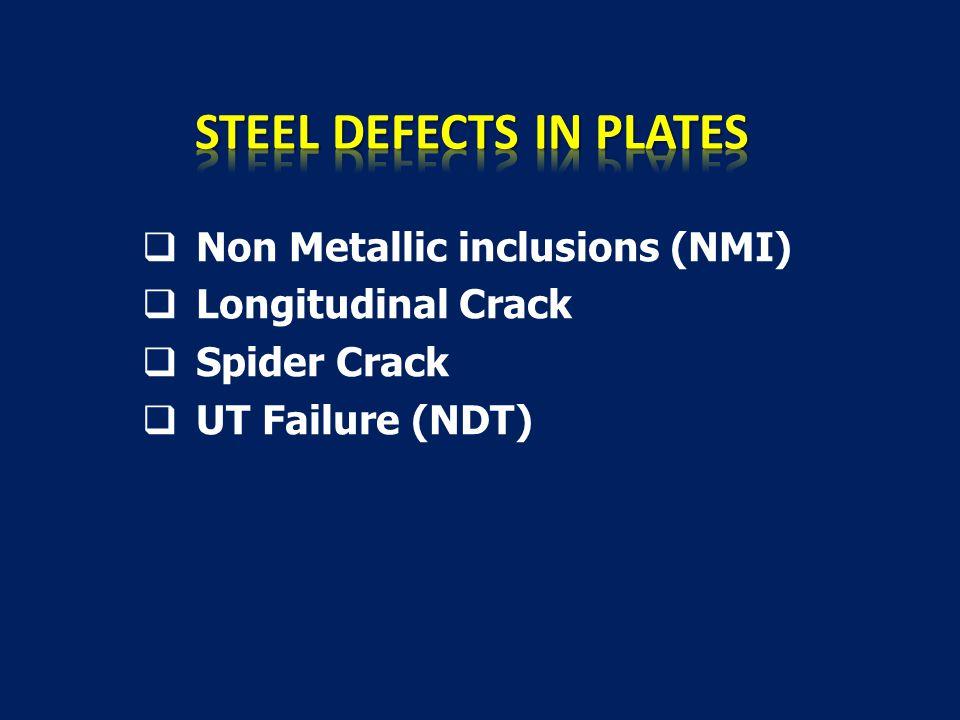  Non Metallic inclusions (NMI)  Longitudinal Crack  Spider Crack  UT Failure (NDT)