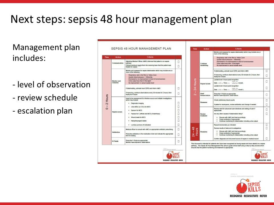 Next steps: sepsis 48 hour management plan Management plan includes: - level of observation - review schedule - escalation plan