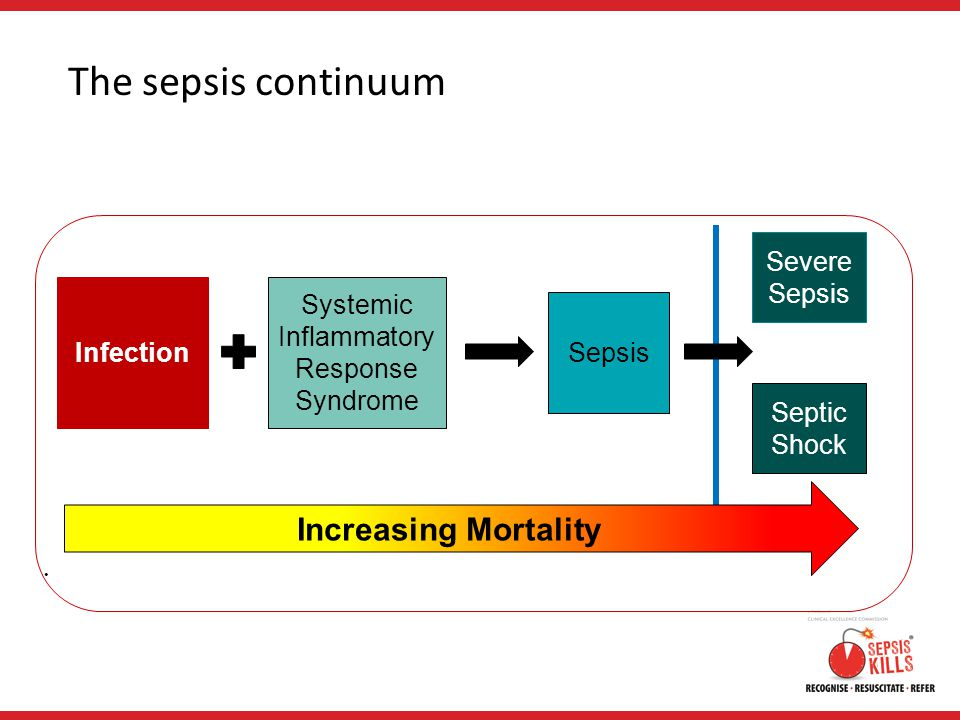 The sepsis continuum Systemic Inflammatory Response Syndrome Infection Sepsis Severe Sepsis Septic Shock Increasing Mortality