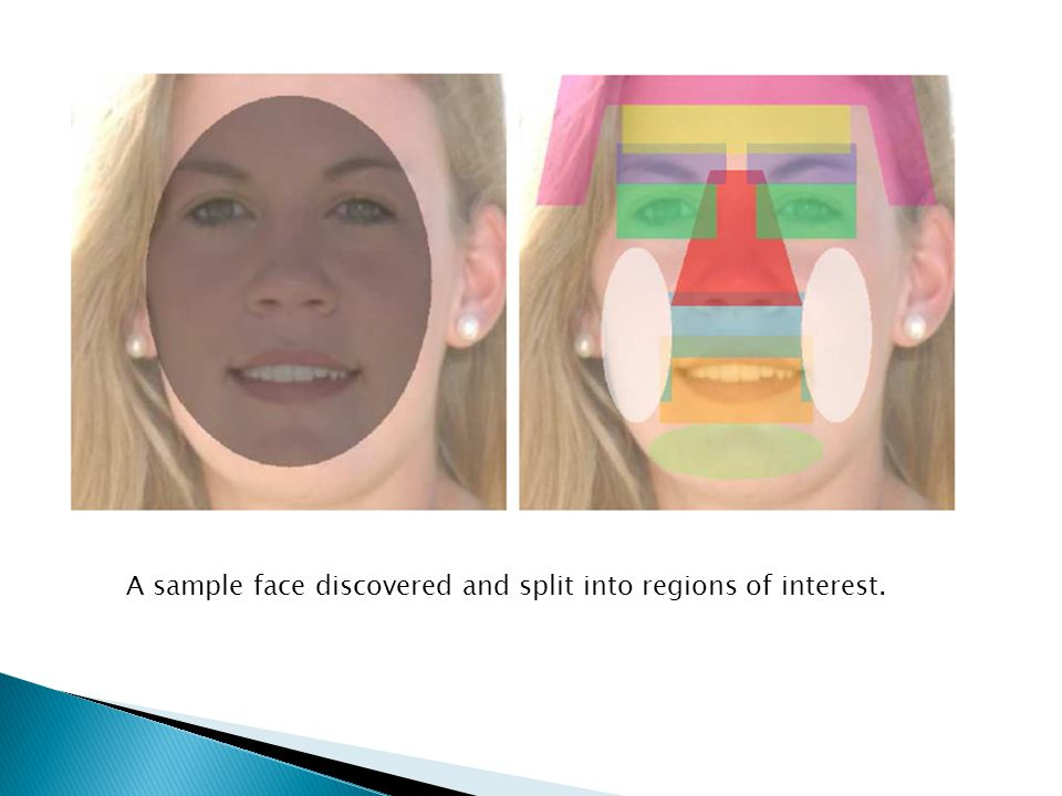 A sample face discovered and split into regions of interest.