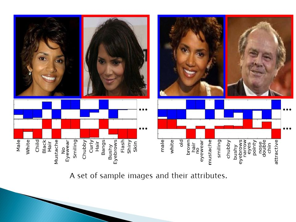  A set of sample images and their attributes.
