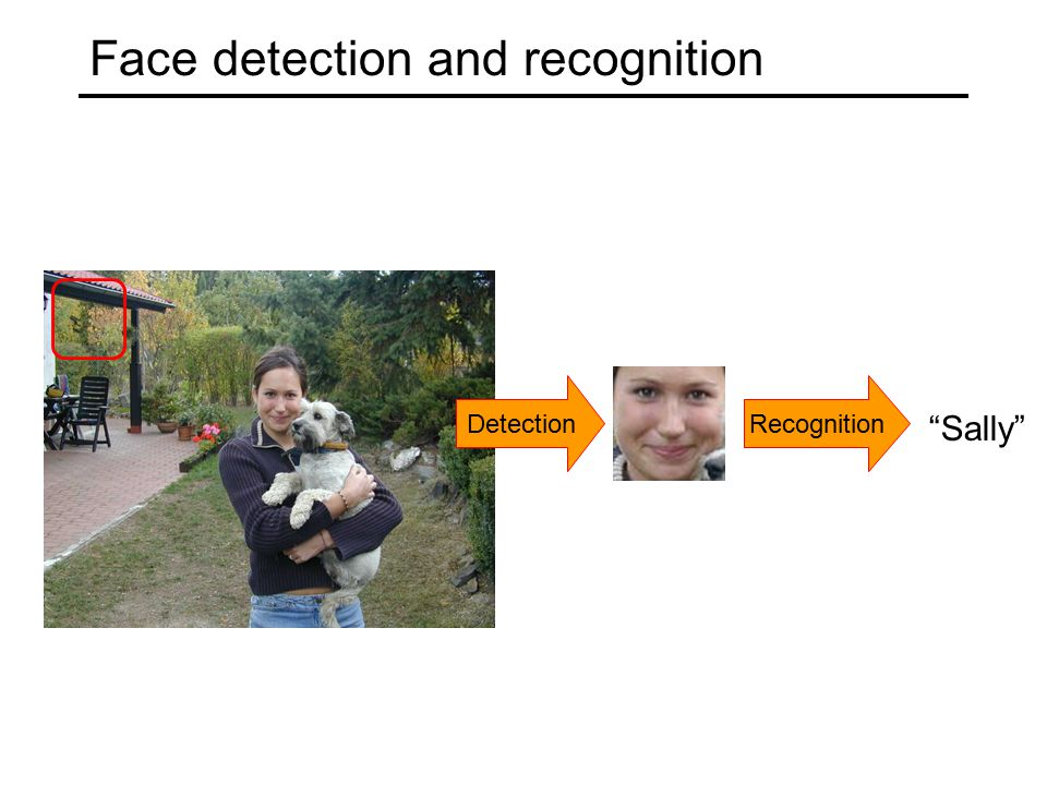 Face detection and recognition DetectionRecognition Sally