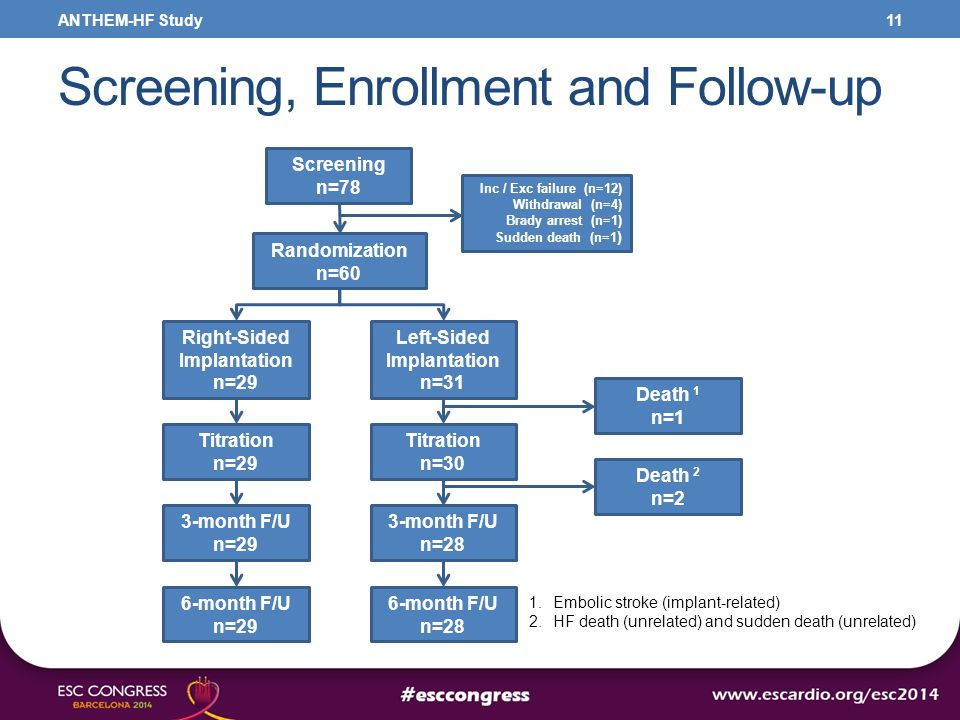 Screening, Enrollment and Follow-up 11 Screening n=78 Randomization n=60 Titration n=29 Right-Sided Implantation n=29 Inc / Exc failure (n=12) Withdra