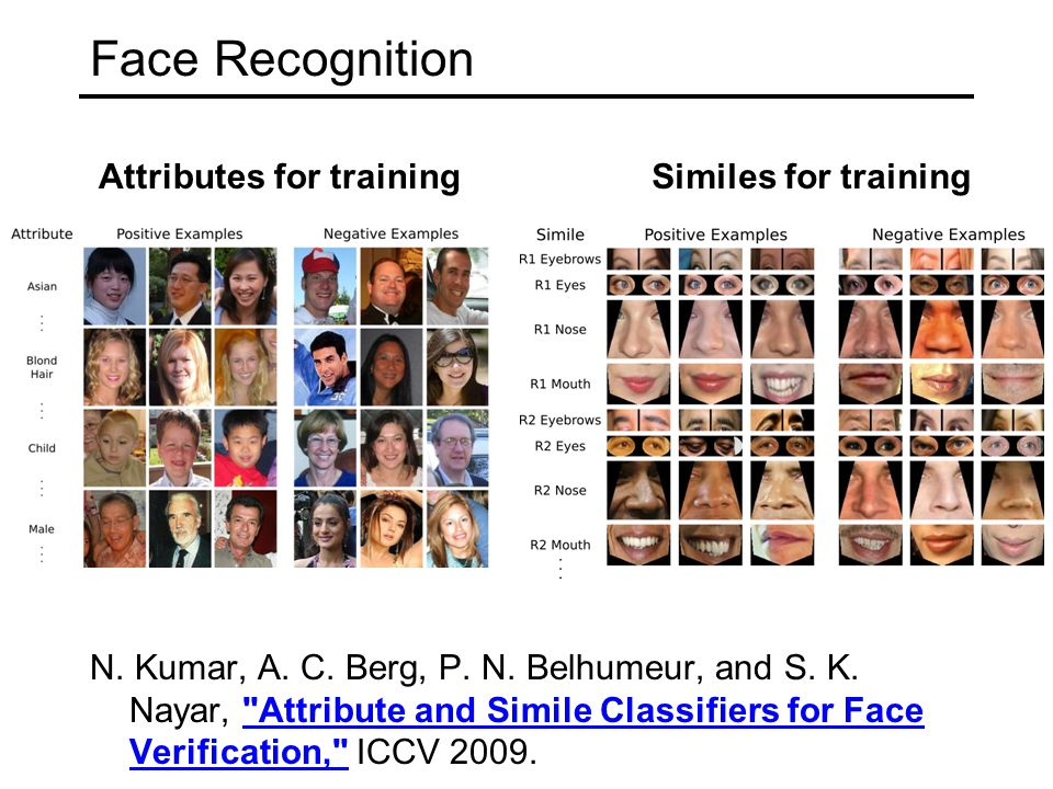Face Recognition N. Kumar, A. C. Berg, P. N. Belhumeur, and S.