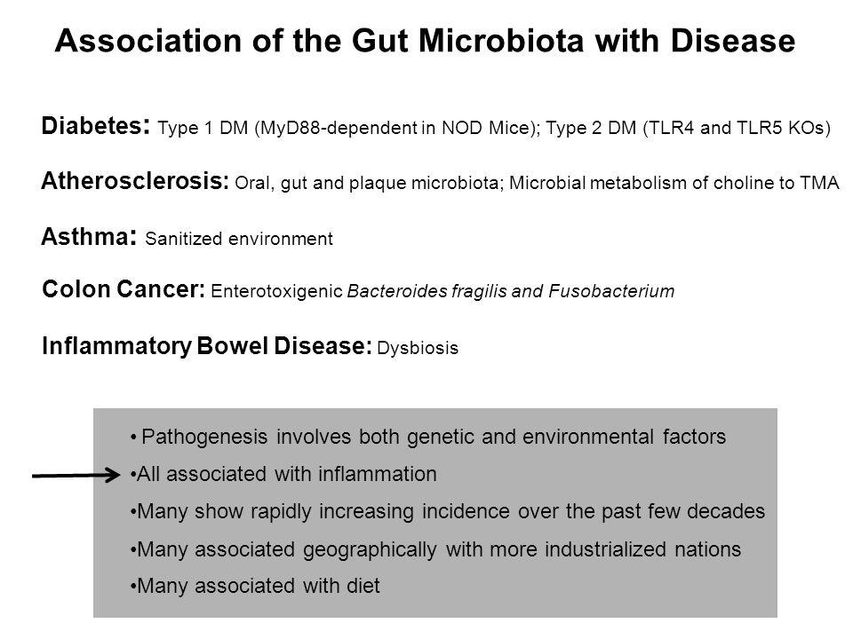 Host Gene-Microbial Interactions in the Pathogenesis of Immune- Mediated Diseases in Modern Society Parental genotype Infant Adapted from Virgin et al.