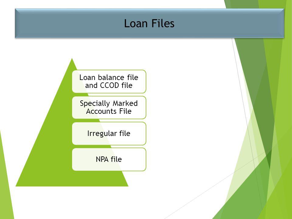 Loan Files Loan balance file and CCOD file Specially Marked Accounts File Irregular fileNPA file