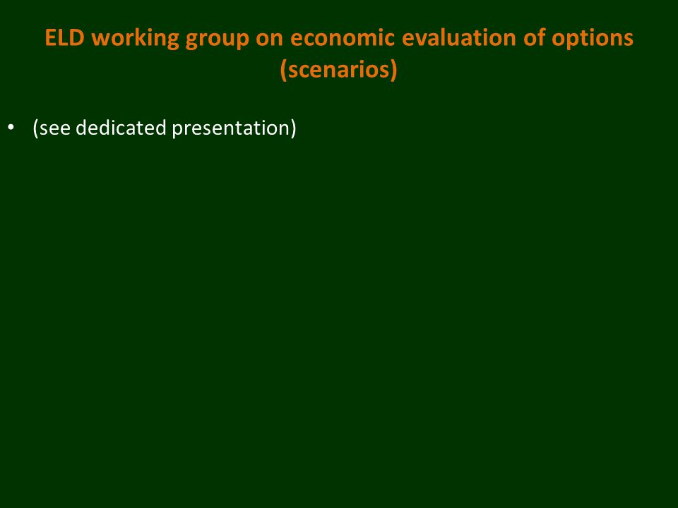 ELD working group on economic evaluation of options (scenarios) (see dedicated presentation)
