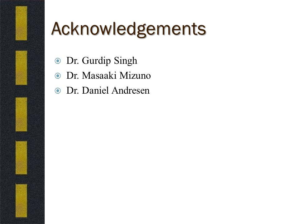Acknowledgements  Dr. Gurdip Singh  Dr. Masaaki Mizuno  Dr. Daniel Andresen