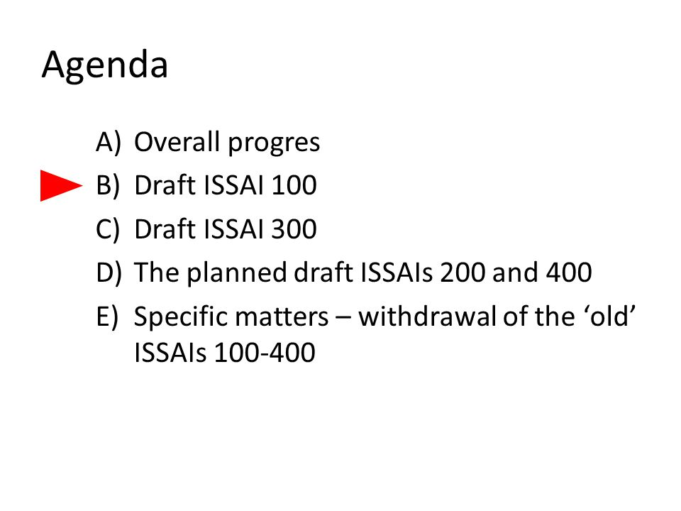 Agenda A)Overall progres B)Draft ISSAI 100 C)Draft ISSAI 300 D)The planned draft ISSAIs 200 and 400 E)Specific matters – withdrawal of the 'old' ISSAI