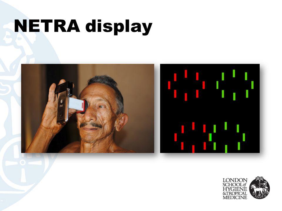 NETRA display