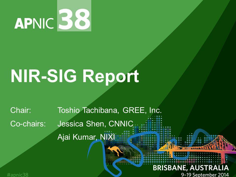 NIR-SIG Report Chair:Toshio Tachibana, GREE, Inc. Co-chairs: Jessica Shen, CNNIC Ajai Kumar, NIXI
