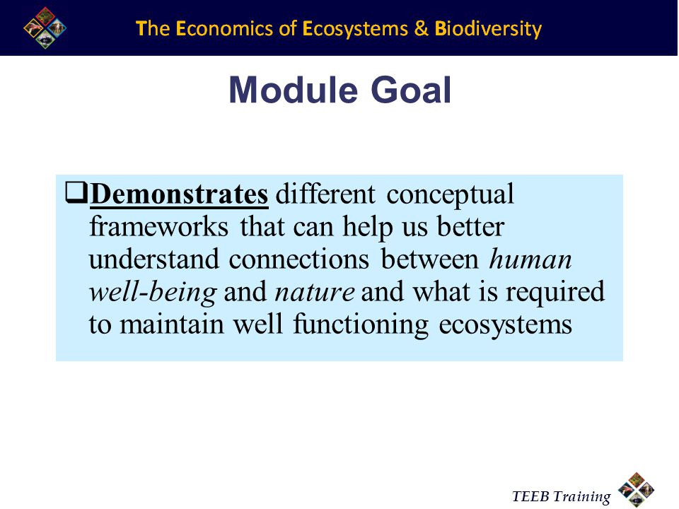 TEEB Training Main Objectives of module 3  Explores the various existing conceptual frameworks that are available for making ecosystem assessments  Identifies some of the trade offs, limitations and challenges of valuing ecosystems and biodiversity  Introduces some of the major activities that are taking place at the international level that are translating these concepts into action