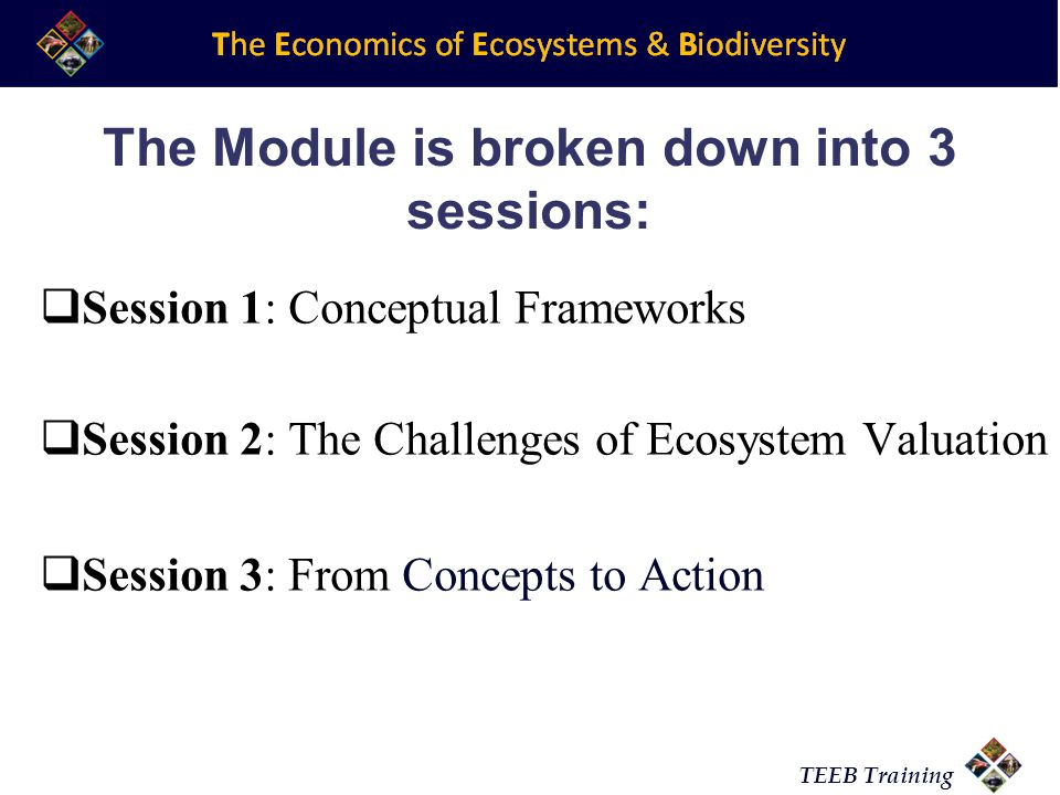 TEEB Training The Module is broken down into 3 sessions:  Session 1: Conceptual Frameworks  Session 2: The Challenges of Ecosystem Valuation  Session 3: From Concepts to Action
