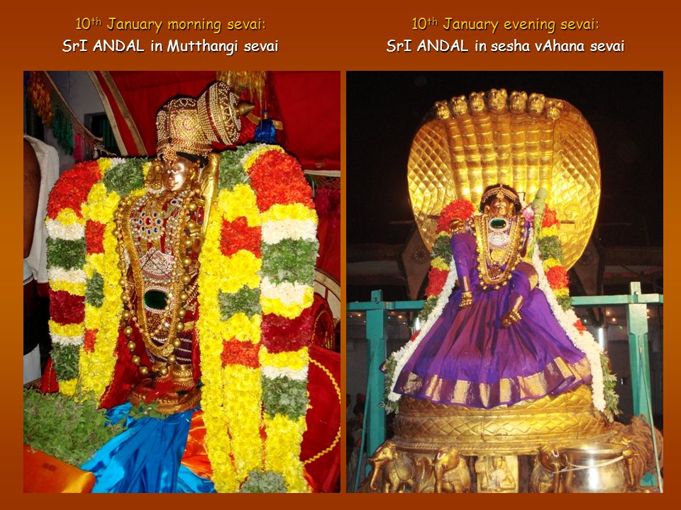 10 th January morning sevai: SrI ANDAL in Mutthangi sevai 10 th January evening sevai: SrI ANDAL in sesha vAhana sevai
