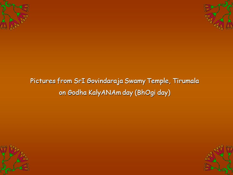 Pictures from SrI Govindaraja Swamy Temple, Tirumala on Godha KalyANAm day (BhOgi day)