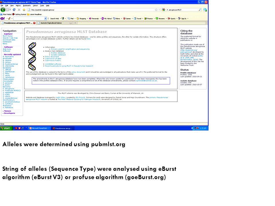 Alleles were determined using pubmlst.org String of alleles (Sequence Type) were analysed using eBurst algorithm (eBurst V3) or profuse algorithm (goeBurst.org)
